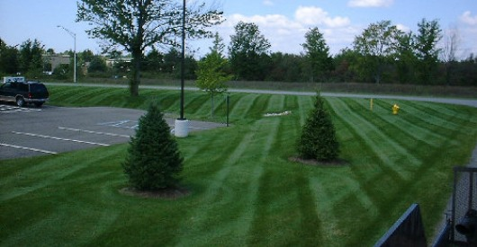 Professional Commercial Lawn Mowing Contractor in Rolla, Missouri