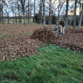 Leaf Cleanup Services Phelps and Pulaski County
