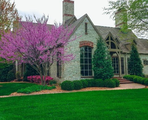Residential Lawn and Landscaping Services in Rolla