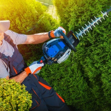 Pulaski County Shrub Pruning Contractor