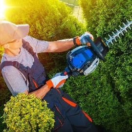 Pulaski County Shrub Pruning Contractor