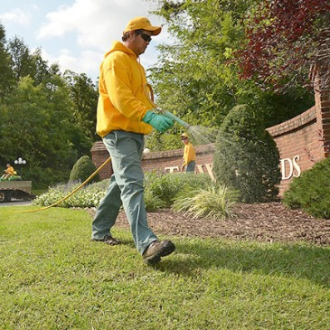 Licensed Fertilization and Weed Control Services Near Rolla