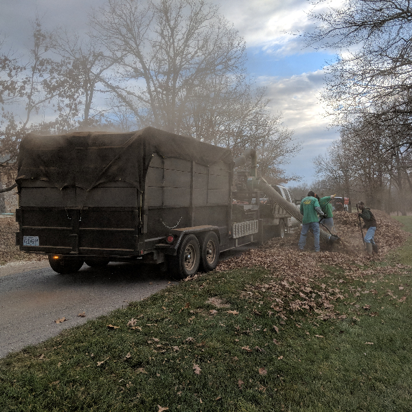 Yard Cleanup Phelps and Pulaski County, Missouri